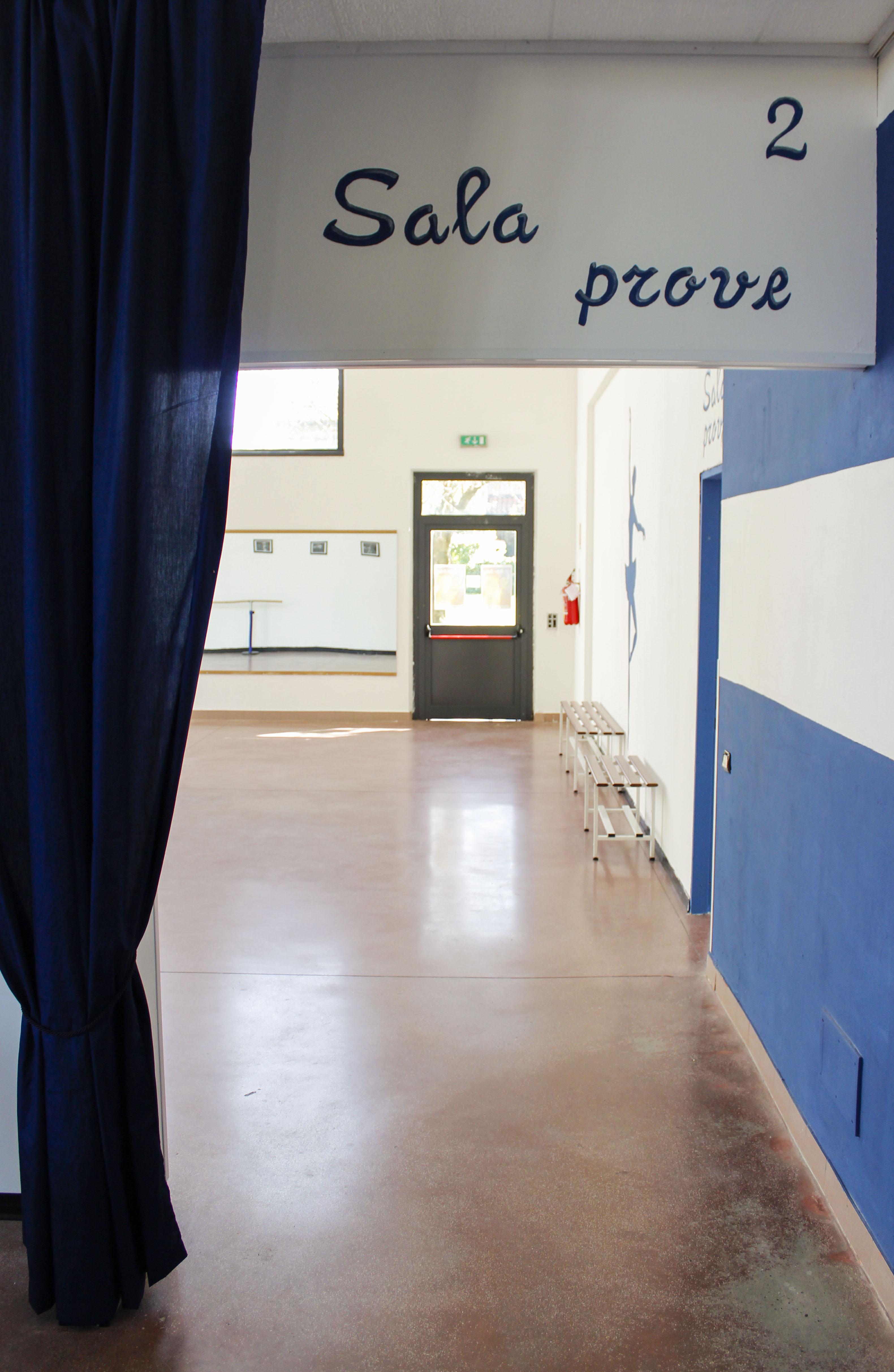THE BALLET SCHOOL (8)